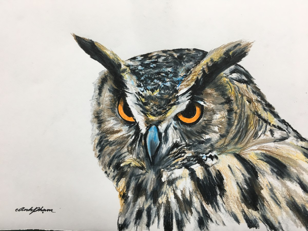 Time Lapse of a Great Horned Owl with Colored Pencils