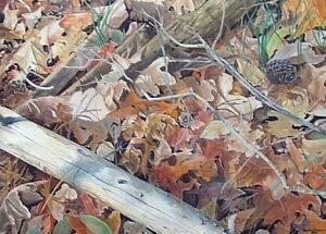 080706_janet-toney-watercolor