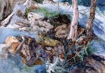 john-ruskin-watercolor-rockferns