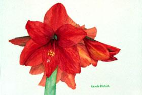 020607_glenda-dietrich-artwork