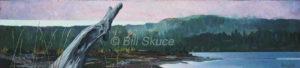010711_bill-skuce