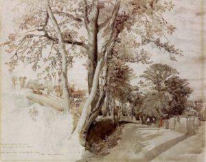 john-ruskin_trees-in-a-lane