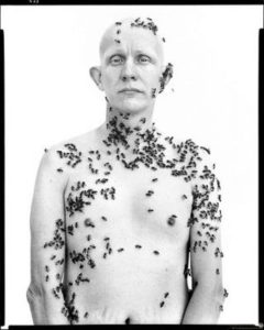 Beekeeper, 1981 by Richard Avedon