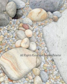 """""""On the Rocks"""" 8x10"""" Colored Pencil on Drawing Paper"""