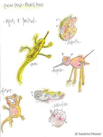My daughter Charlotte's drawings of some animals we saw in Thailand