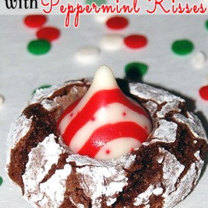 3rd Annual Christmas Cookie Recipe Swap with Recipe Card