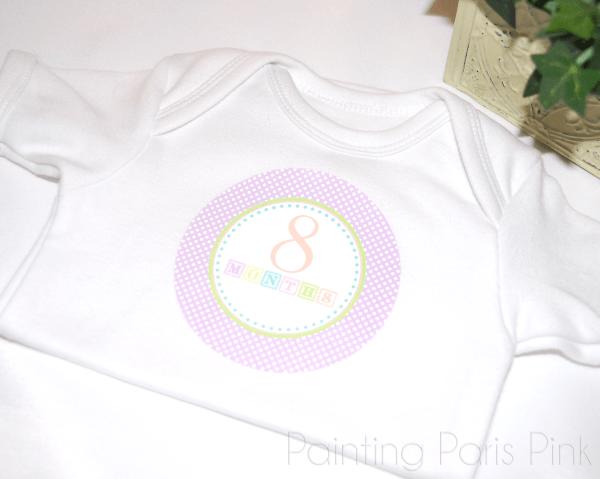 Shabby Chic Blocks Milestone Baby Stickers