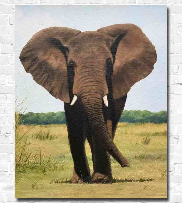 Lone Bull oil painting by wildlife artist - Jonathan Truss