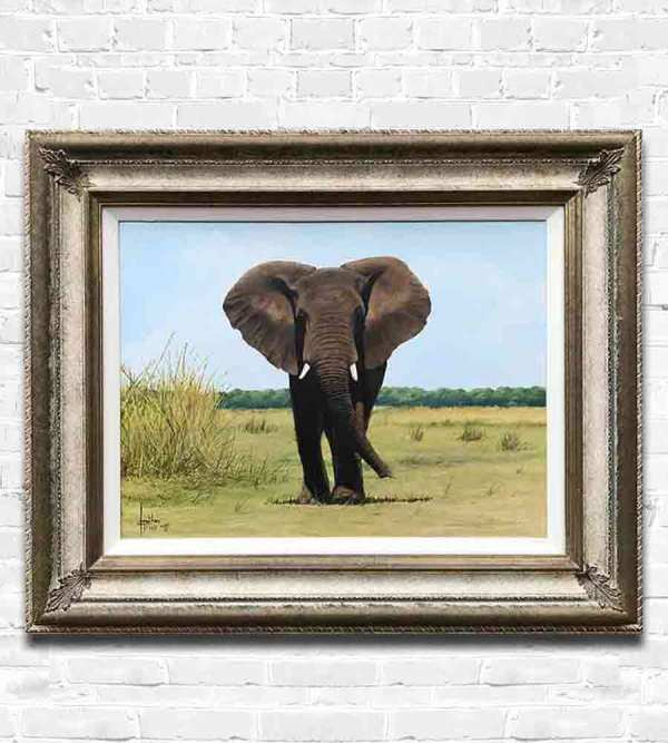 Lone Bull with frame