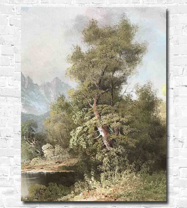Detailed view of a tree by R Willson