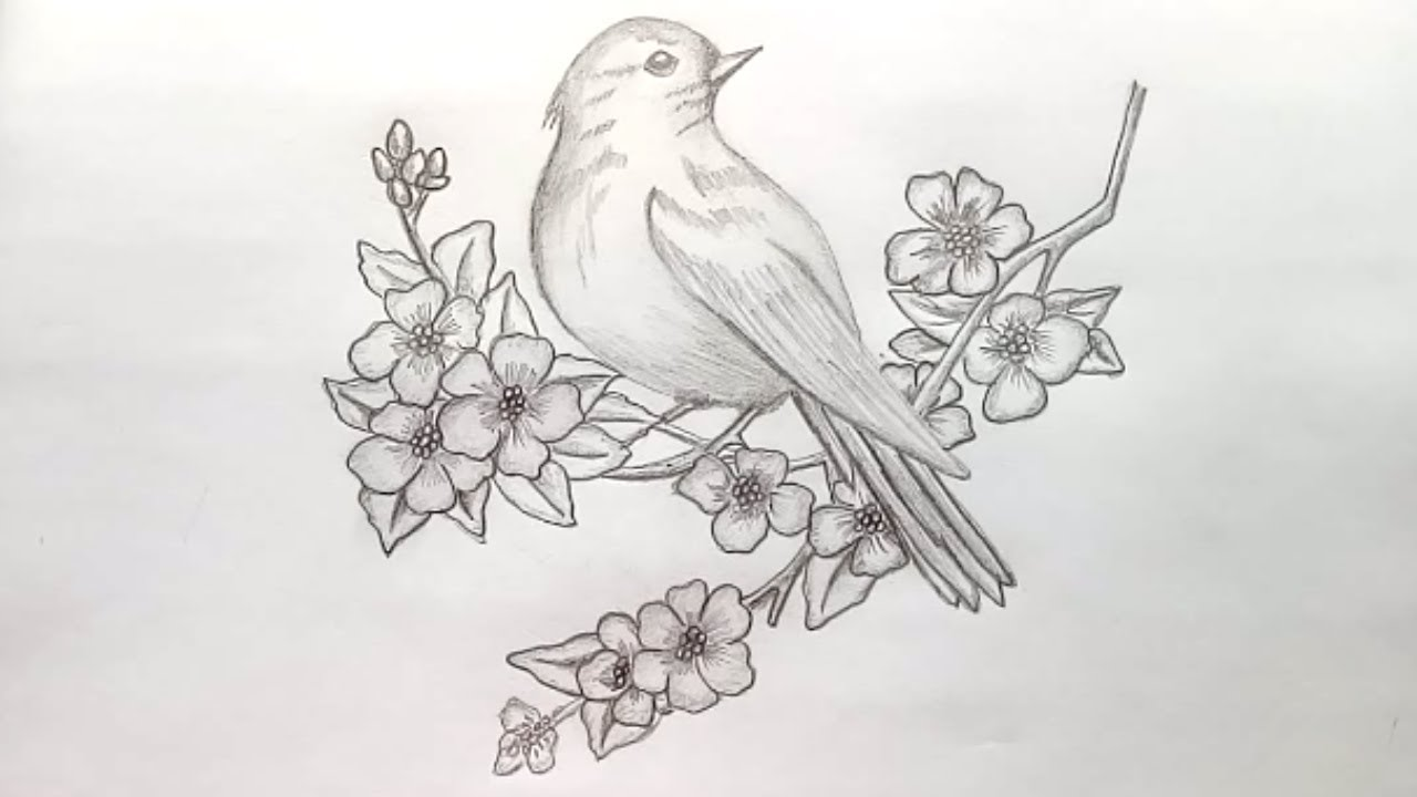 Flowers And Birds Drawing at PaintingValley.com | Explore ...
