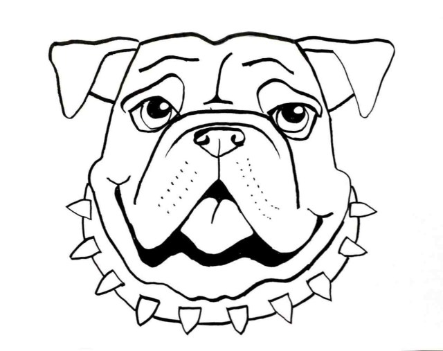 bulldog sketch easy at paintingvalley | explore collection of