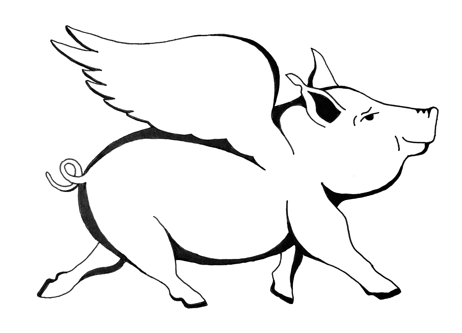 A Pig Wing