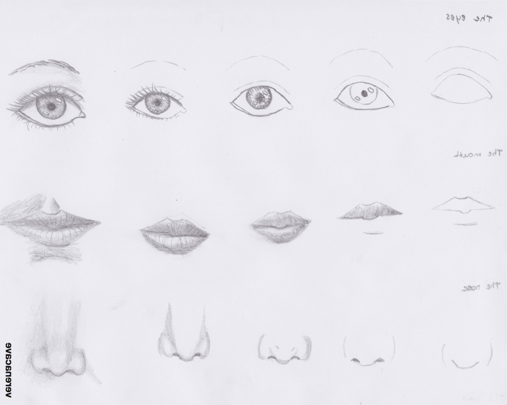Sketching Exercises For Beginners At Paintingvalley