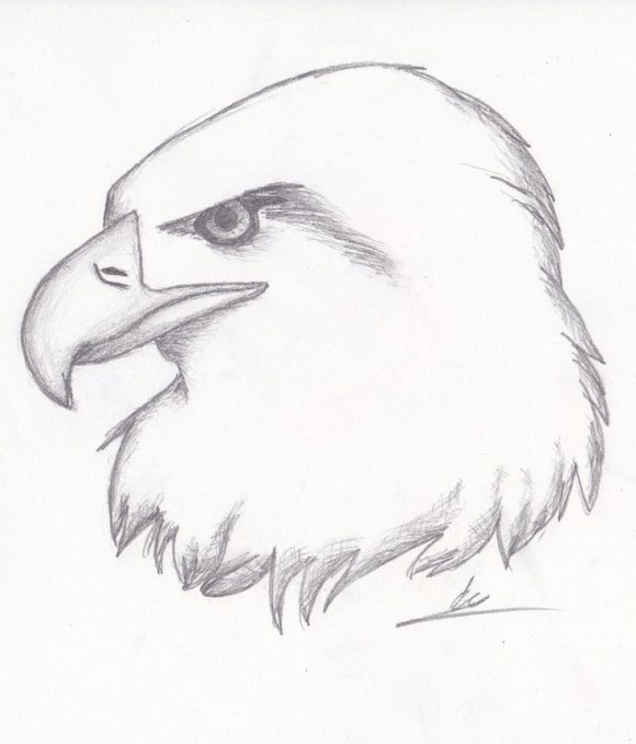 Sketching Ideas For Beginners at PaintingValley.com ...