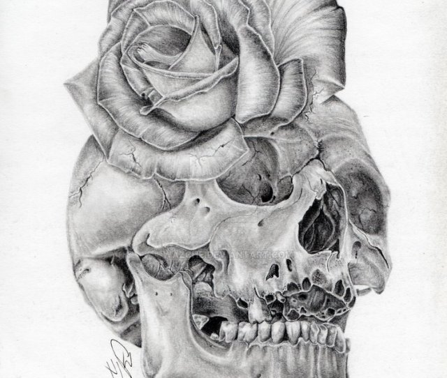 X Skull Rose Morph Graphite Pencil Drawing By Wazche Skull And Rose Sketch