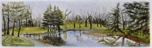 "FIRST Place with 37 votes! Roseland Water Hazard, Windsor, On. Watercolour Image 5 1/2"" x 17 1/2"" Framed 12 x 24 1/2 $275"