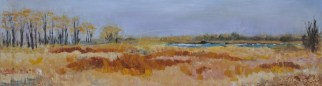 "Spring Marsh, Petite Côte Conservation Area. Oil on Canvas, 8"" x 24"" Unframed $200."