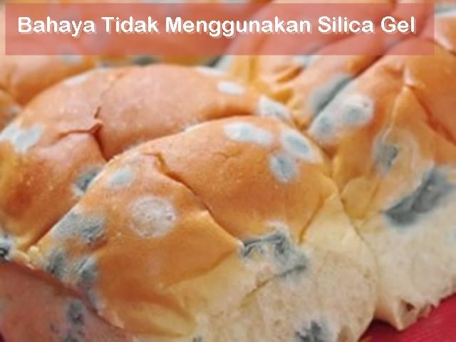 roti berjamur karena tidak pakai silica gel
