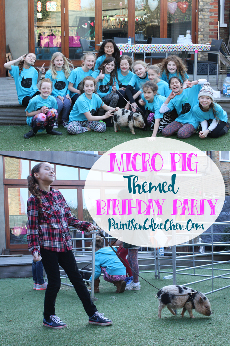Micro Pig Birthday Party