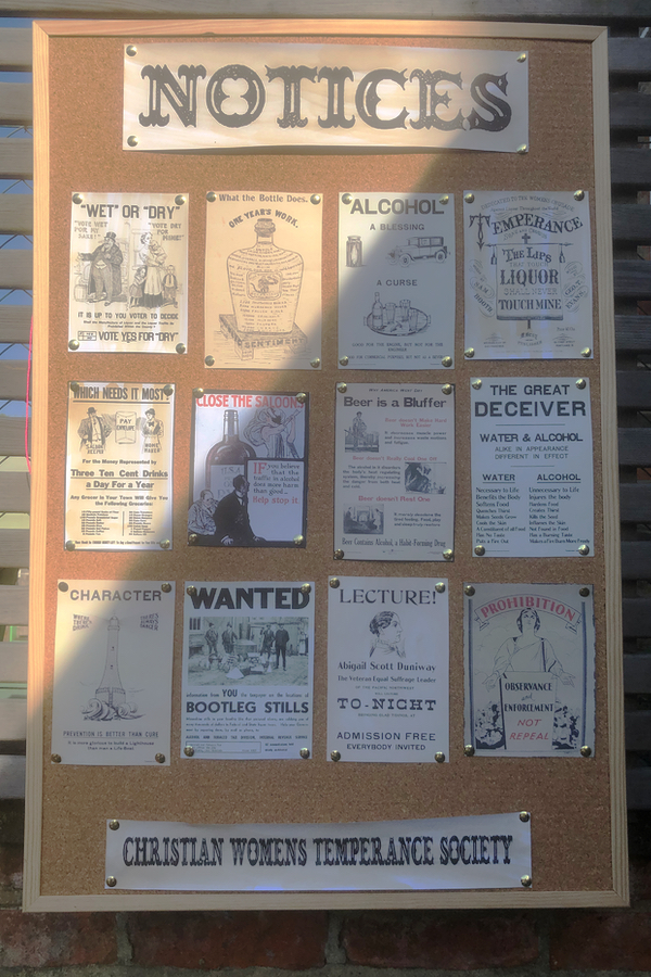 Temperance society adverts and posters as speakeasy party decor