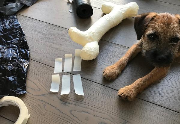 DIY Dog costume