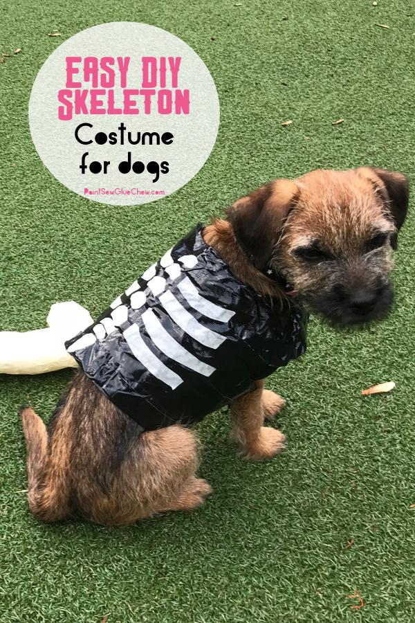 easy diy skeleton halloween costume for dogs
