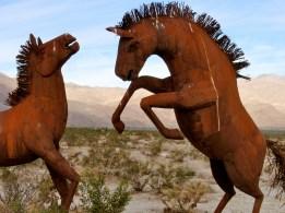 Desert sculpture ~ Anza Borrego State Park, CA