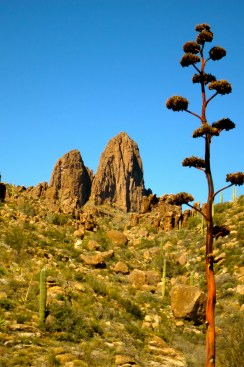 First view of Weaver's Needle from the trail, with century plant standing guard