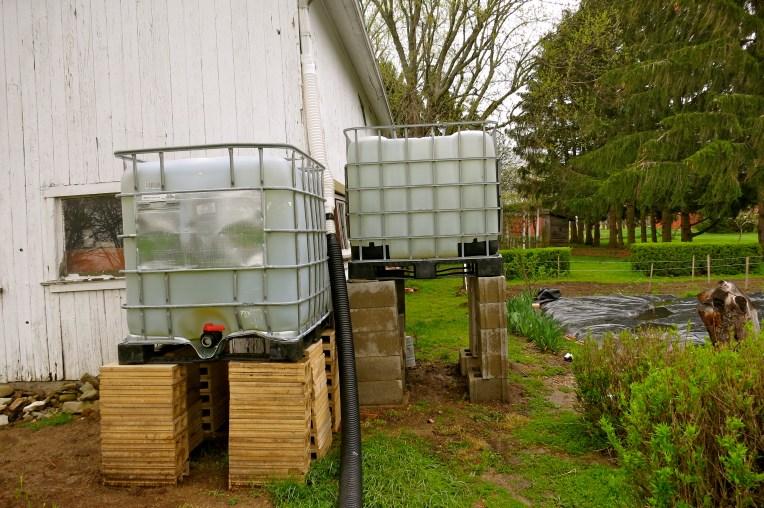 Plenty of rainwater for the garden