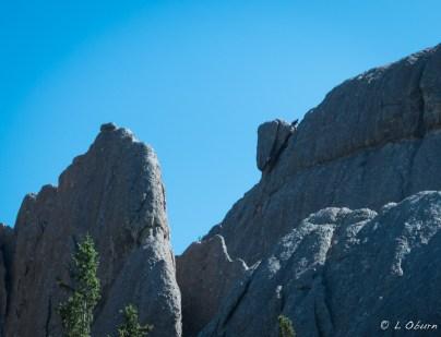 I spy a rock climber!