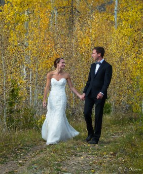 Enveloped in the golden glow of love and aspens