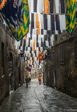 Flags still fly from the summer Palio races.