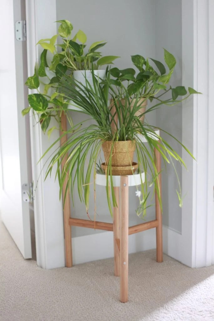 10 Amazing Indoor Plant Stand Ideas for Every Type of Home ... on House Plant Stand Ideas  id=91480