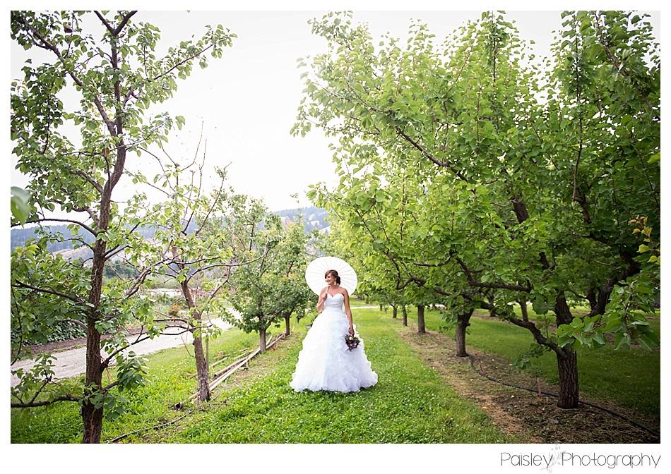 Bride with Parasol Photos, Kelowna Orchard Wedding, Bridal Photography, Bride Photos, Kelowna Wedding, Vernon Wedding, Vernon Wedding Photography, Orchard Wedding Photos,