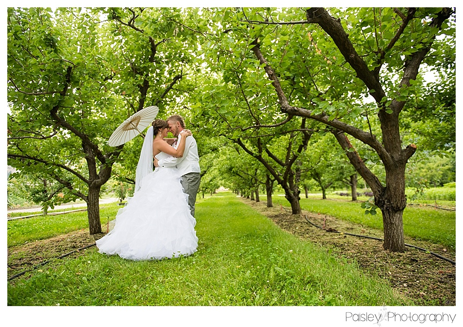 Orchard Wedding, Kelowna Orchard Wedding, Kopje Park Wedding, Calgary Wedding Photographer, Kelowna Wedding Photography, Okanagan Lake Wedding Photography, Okanagan Wedding Photographer, Destination Wedding