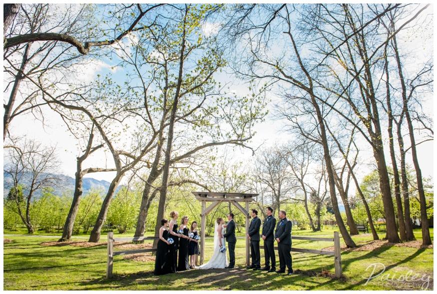 Gellatly Nut Farm Wedding Photographer