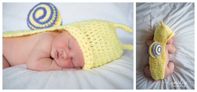 Newborn Photographers Alberta