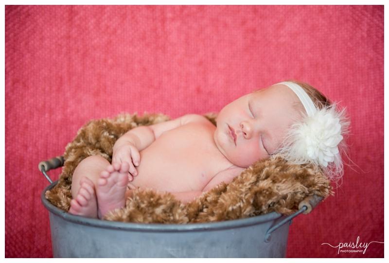Newborn Baby Girl Newborn Photography Calgary