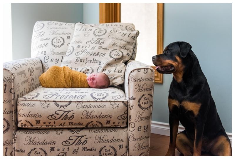 Calgary Newborn Photos - At Home Newborn Photography