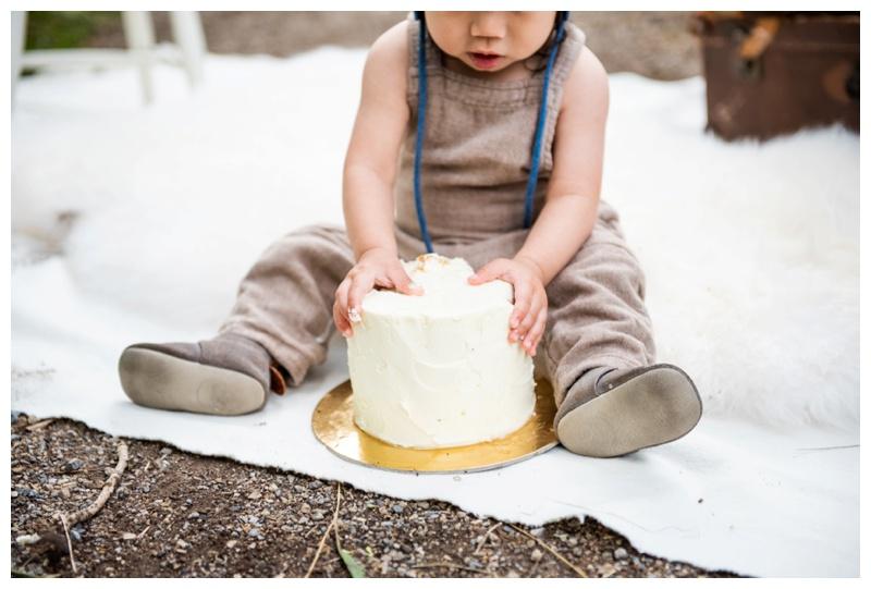 1st Birthday Cake Smash Photos Calgary