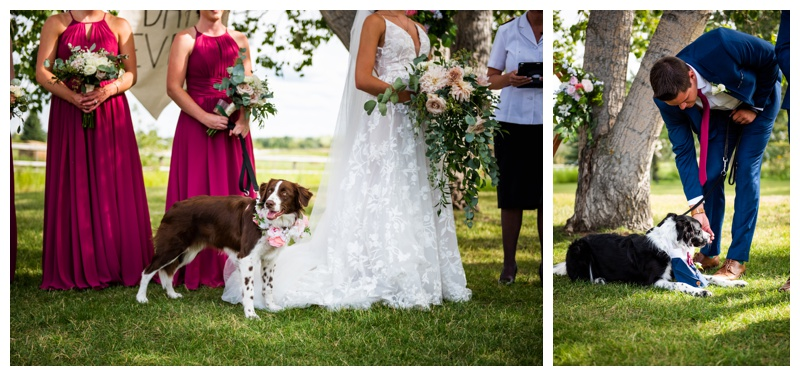 Calgary Photographer - Dewinton Community Hall Wedding