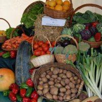 Feira Agrícola é a atração deste domingo em Castelo de Paiva