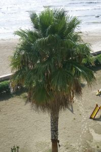 View my hotel balcony @Durres Albania