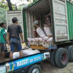 Jual Pakan Kambing Murah di Kota Solo, Ponorogo, Ngawi