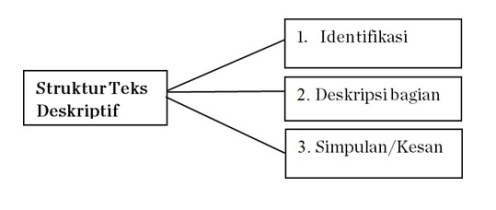 Struktur Teks Deskripsi Menurut modul PJJ Bahasa Indonesia Kelas 7