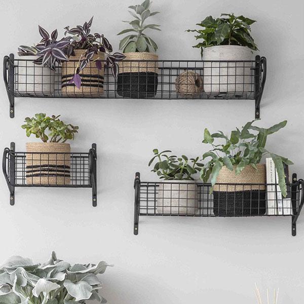 Wall Mounted Baskets