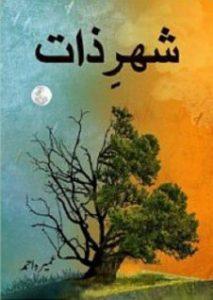 Shehar e Zaat Novel By Umera Ahmad