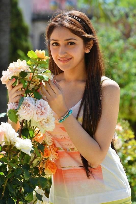 sayesha-saigal-upcoming-actress-hot-pics