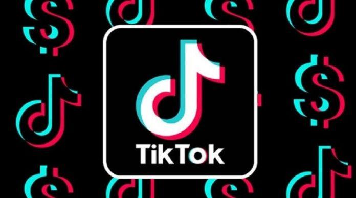 TikTok releases Urdu version in Pakistan by updating its community guidelines
